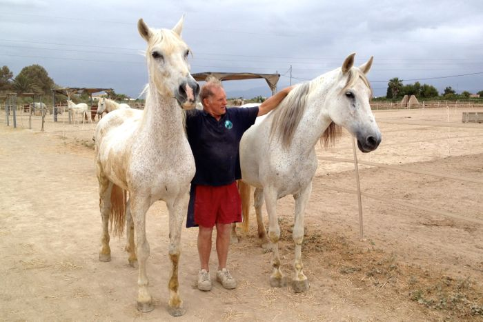 Rod with two horses
