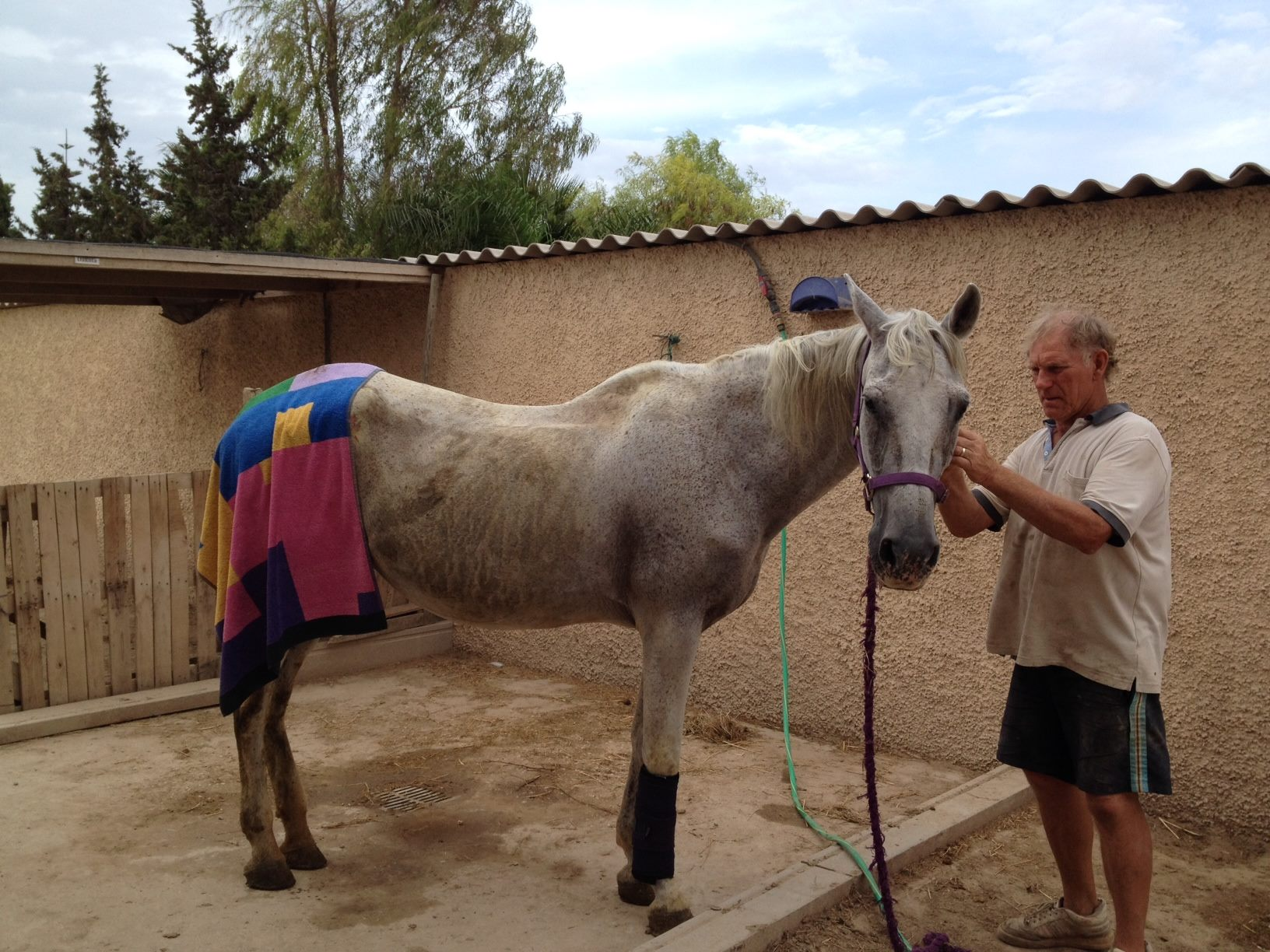 Melody in September 2014