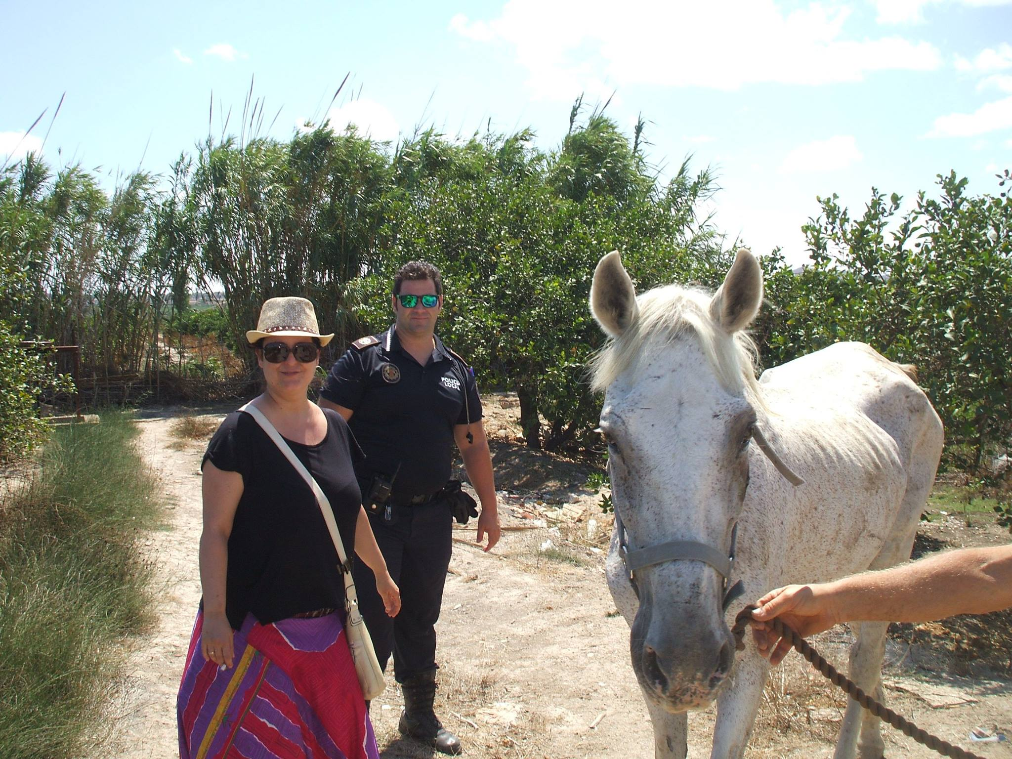 Melody on rescue day 2