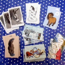 Illustrated equine greeting cards (13 pack)